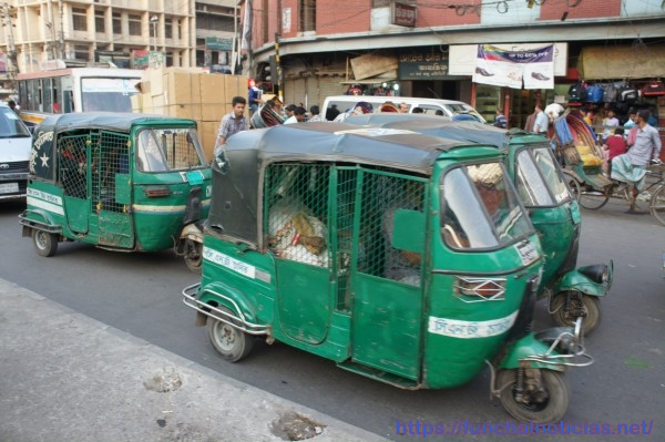 Os ´tuk-tuk' no Bangladesh são autênticos galinheiros