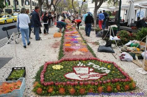 tapete-festa-flor