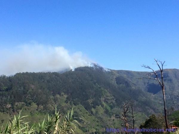 incêndio Canhas2