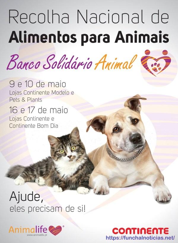 recolha Animalife cartaz