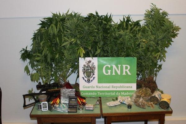 Droga GNR