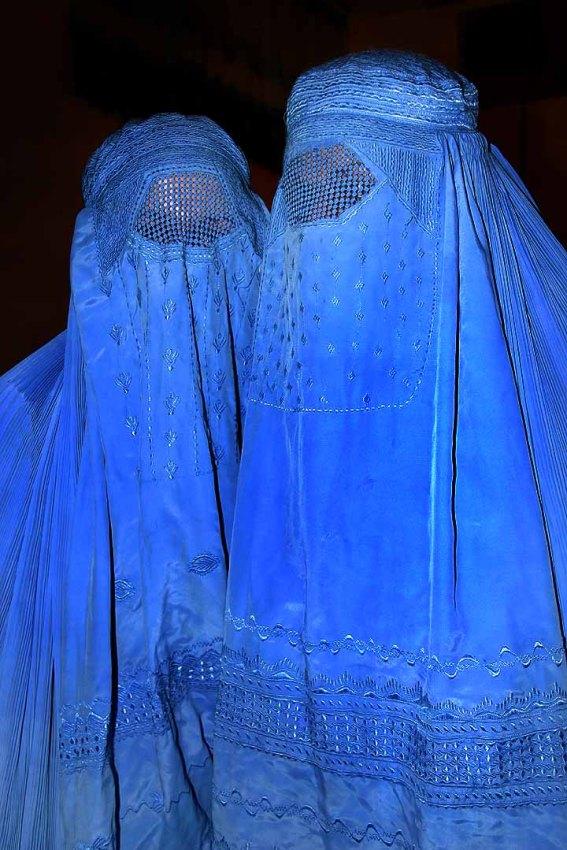 Imagem retirada do site: www.wikimedia.org
