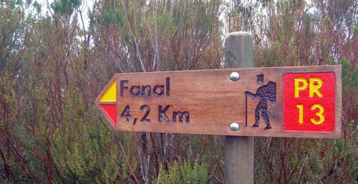 fanal1
