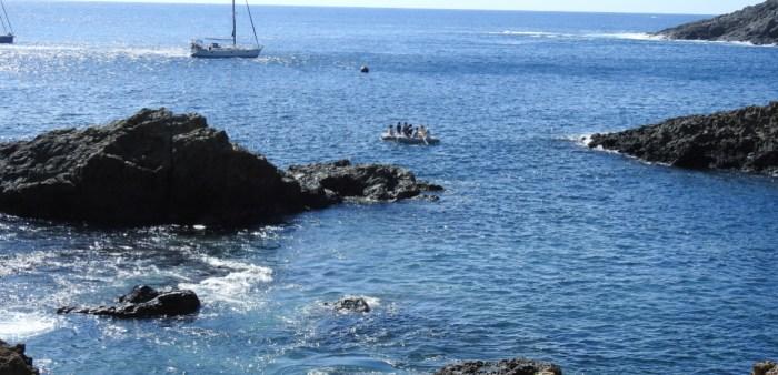 Foto: Polícia Marítima- Selvagens