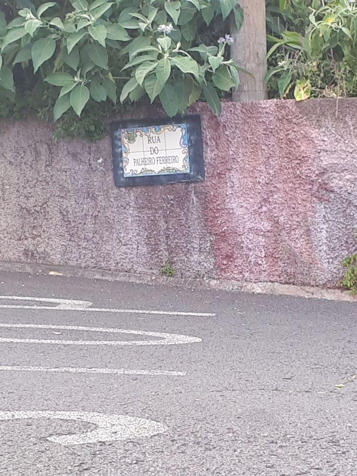Rua do Palheiro placa