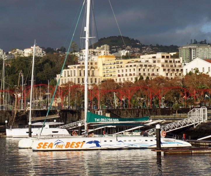Barcos turismo