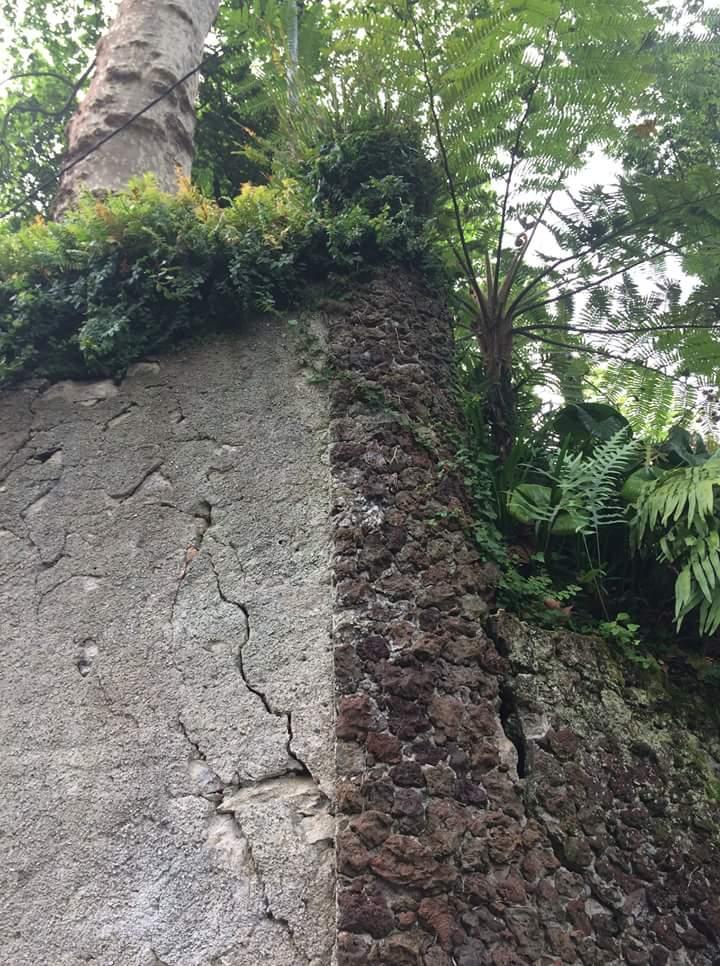 monte muro