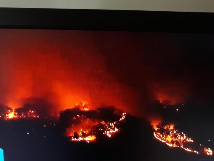 Monchique fogo 6 dias B