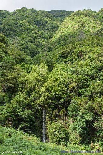 """""""Caminho da Serra - Boaventura"""": uma ótima (a)ventura"""