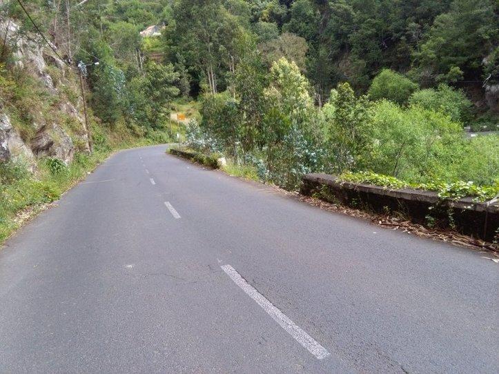 Estrada 102