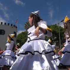 festa-flor-2019-109