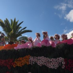 festa-flor-2019-176