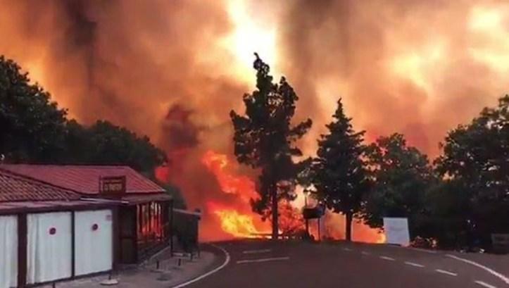 Canárias incendios