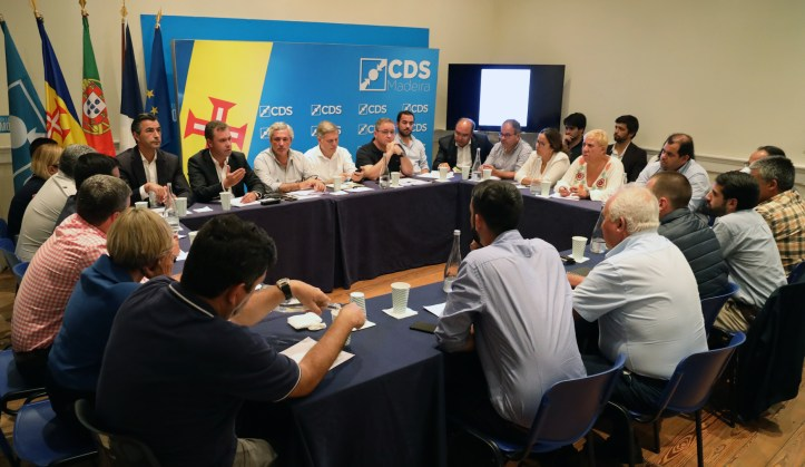 CDS comissão política A