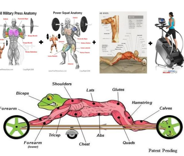 Frog Fitness Was Formed To Fill A Massive Current Need In The Exercise And Fitness Industry By Creating Exercise Products And Equipment Concentrating On