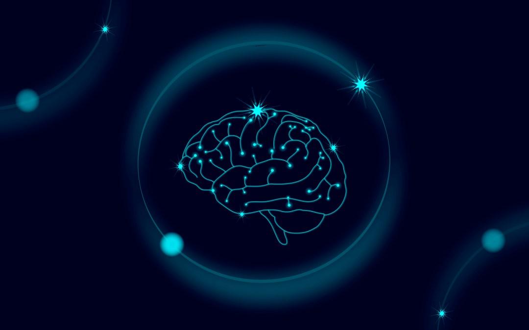 Sobre enfermedades cerebrales (IV): epilepsia