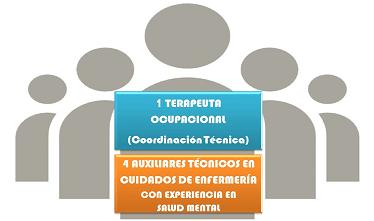 vt_equipo_tecnico
