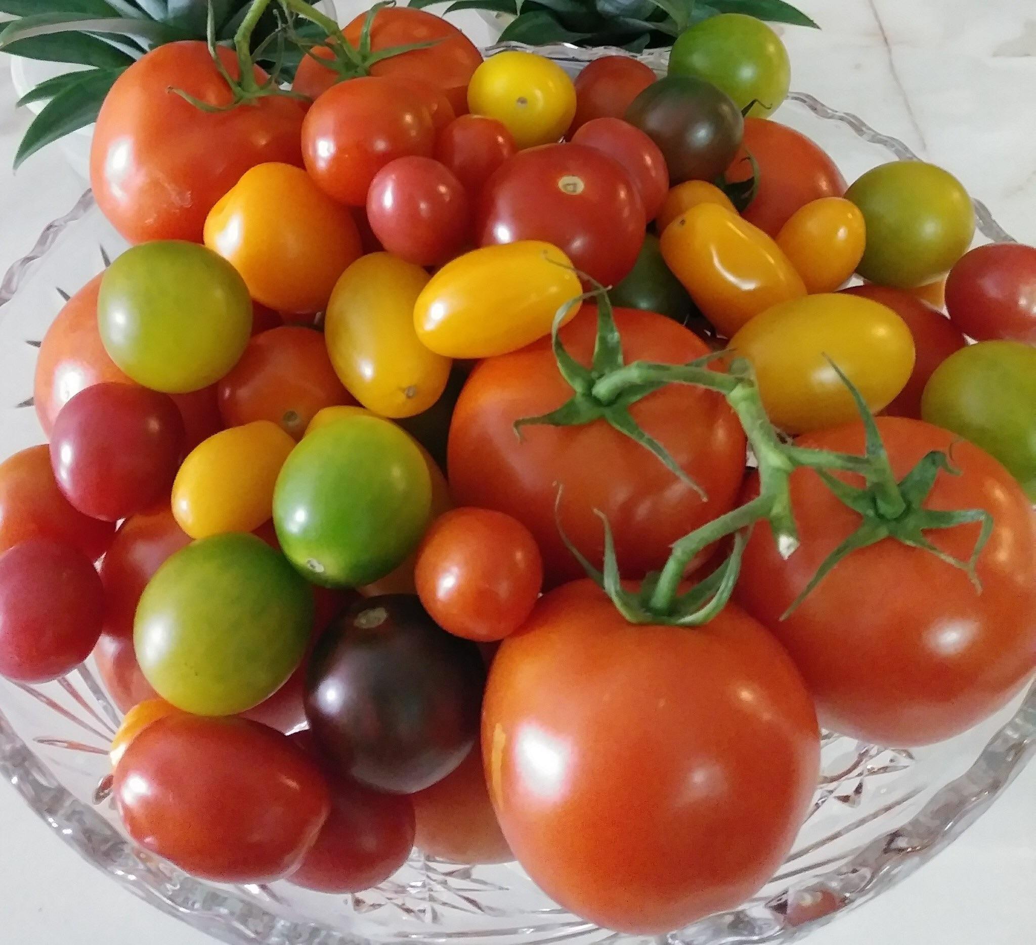 Buena Nutrición para Proteger la Salud