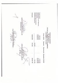 Estados financiero y balances 2019_page-0010