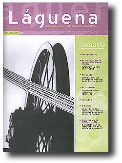 Boletín informativo: Laguena Nº 2