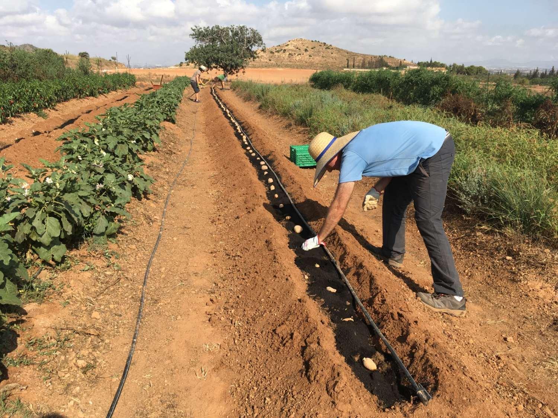12 personas desempleadas descubren la agricultura ecológica gracias al curso impartido en Huerto Pío