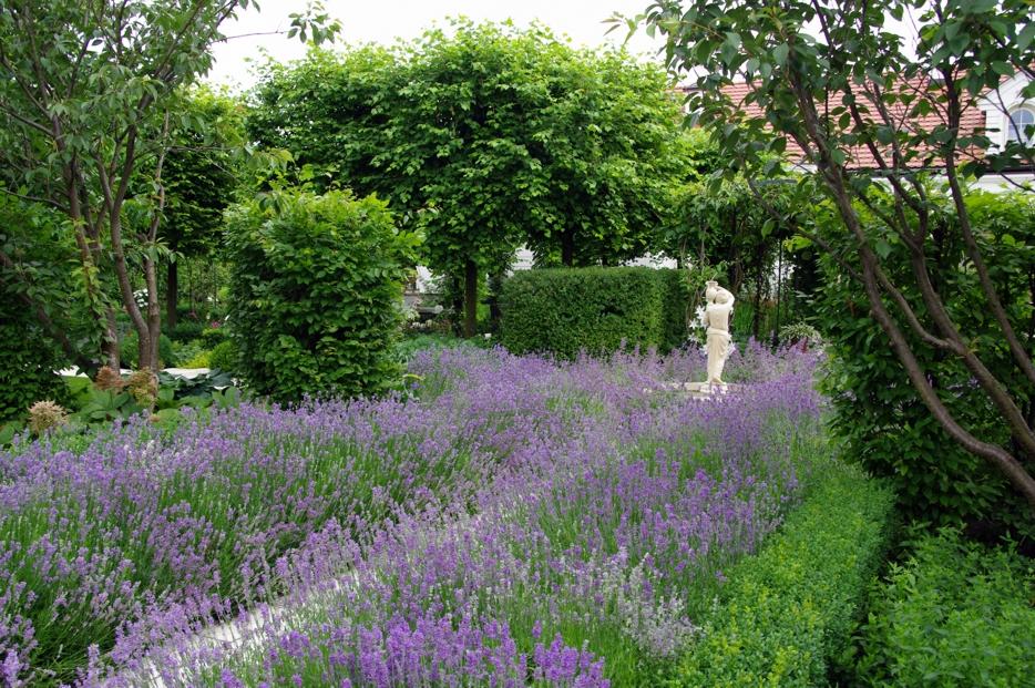 lawendowe pole w ogrodzie pracowni sztuki ogrodowej, która zaprojektuje nasz ogród społeczny w Trójmieście