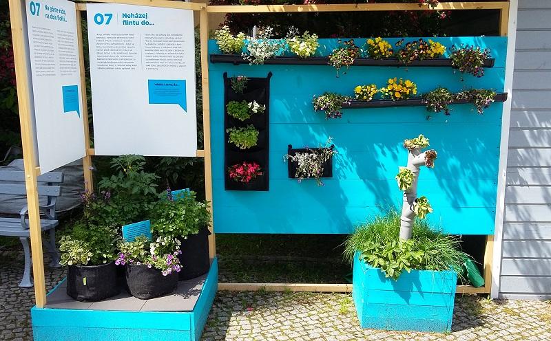 kwiaty w rynnach, kieszeniach i workach - ogród społeczny w cieszynie