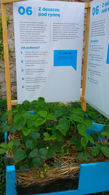skrzynia ogrodowa z banerem informacyjnym