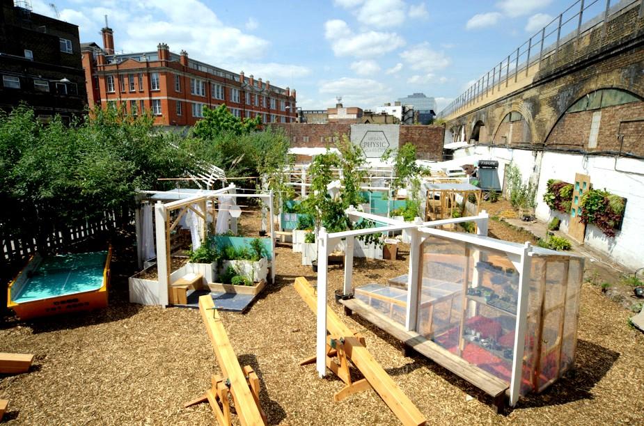 kolejny etap budowy społecznego ogrodu botanicznego