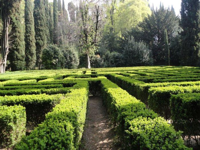 Lose your way! The maze at Giardino Giusti, Verona, Italy