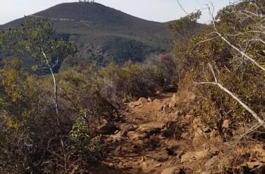 Little Black Mountain Loop Trail
