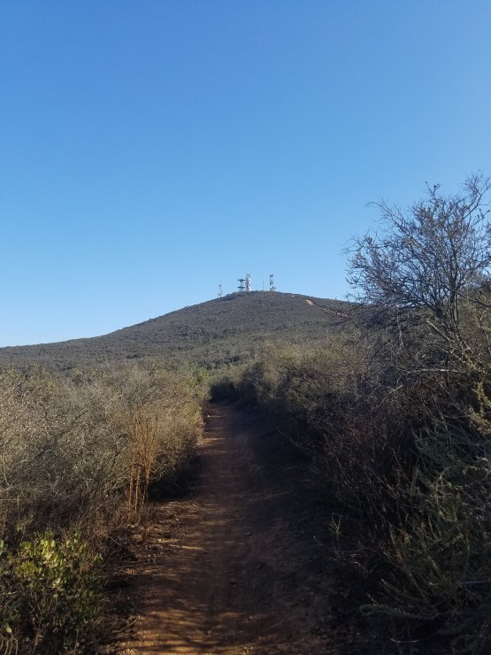 Hiking Black Mountain
