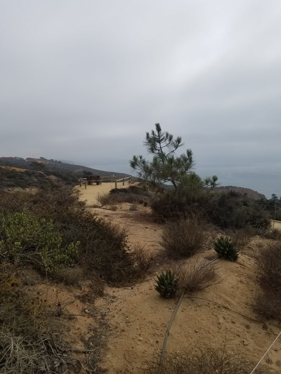 Torrey Pines State Natural Reserve Accessible Trails