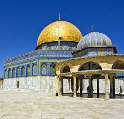 Palestine Is…
