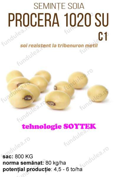 soia procera 1020, compania seminte fundulea