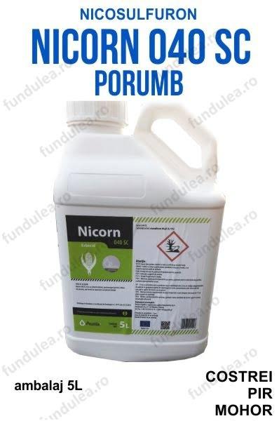 NICORN erbicid porumb nicosulfuron frunza ingusta 5l