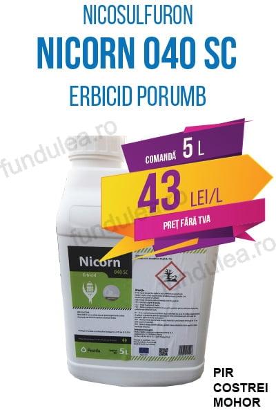 erbicid porumb NICORN 040 SC, 5 L, nicosulfuron, Compania Seminte Fundulea