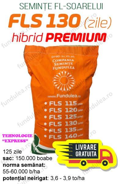 Seminte floarea soarelui FLS 130, Compania Seminte Fundulea