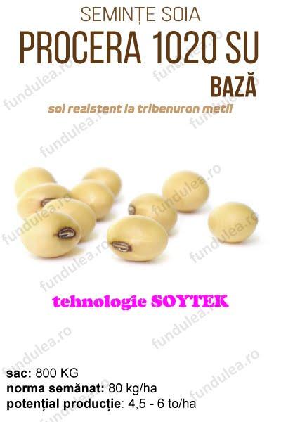 soia procera 1020, baza, compania seminte fundulea