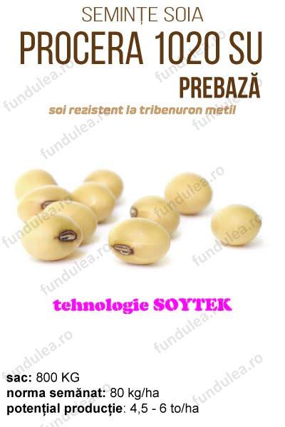 soia procera 1020, PREbaza, compania seminte fundulea