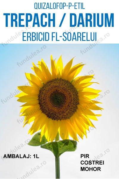 erbicid floarea-soarelui, rapita, sfecla, TREPACH, 1L