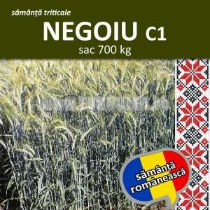 Samanta triticale NEGOIU C1