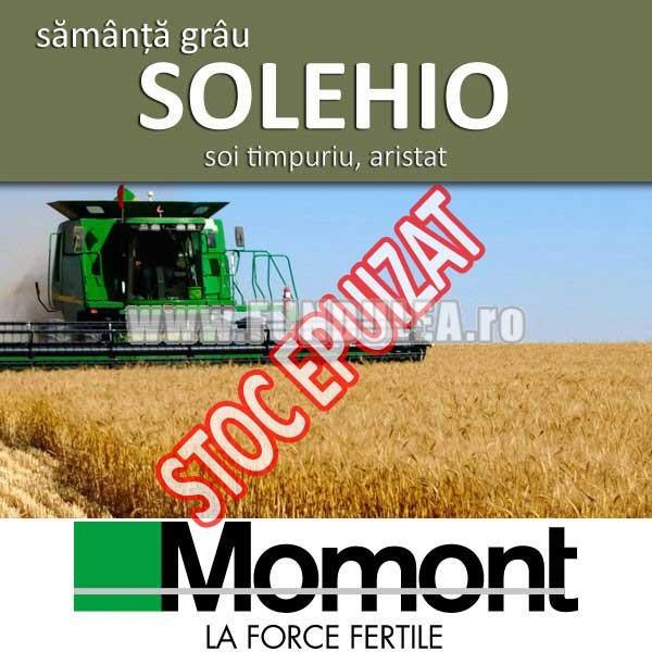 Sămânță grâu SOLEHIO