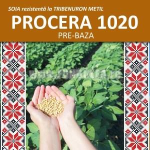 Samanta soia tip PRE BAZA 2