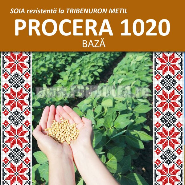 Samanta soia tip BAZA