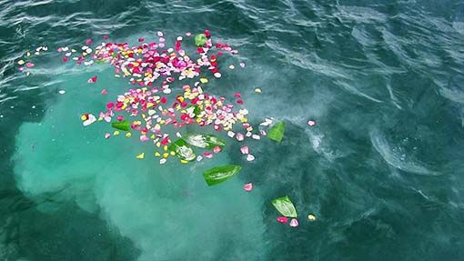 Flowers floating on the ocean during a sea burial