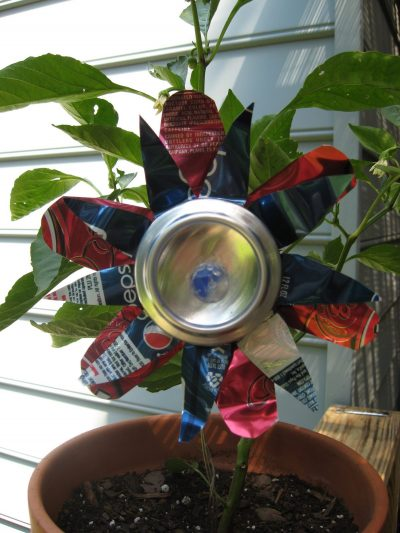 Soda Can Flower Fun Family Crafts