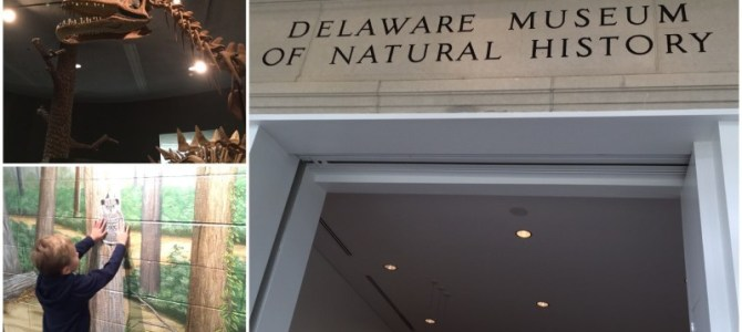 Family Friendly Things to do in Wilmington Delaware