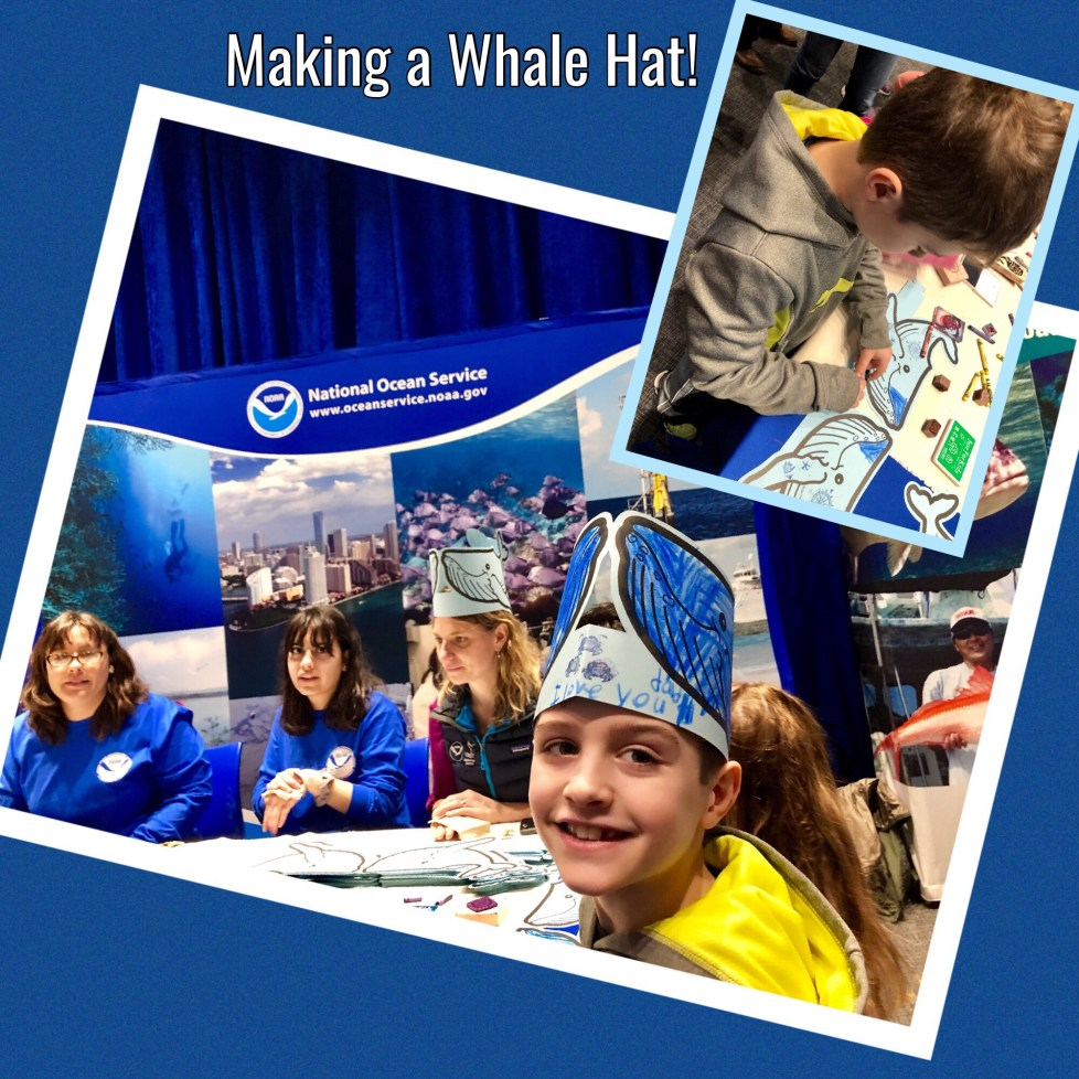 DIY STEM Learning Activity - Making a Whale Hat