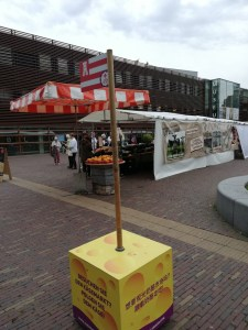 follow the cheese box to find the Alkmaar cheese market